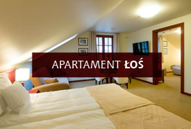 apartament łoś